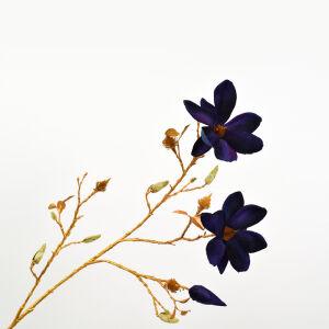 Tak magnolia blauw/goud