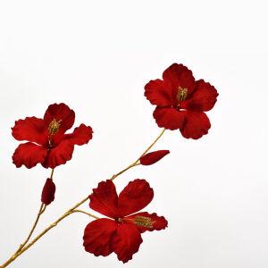 Tak hibiscus rood/goud