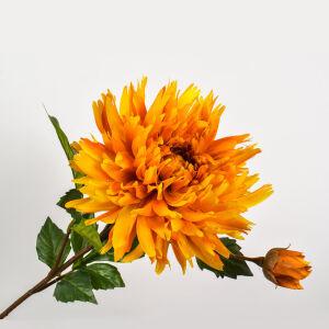 Chrysant steel geel