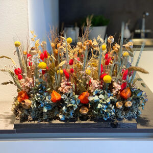 Plank droogbloemen